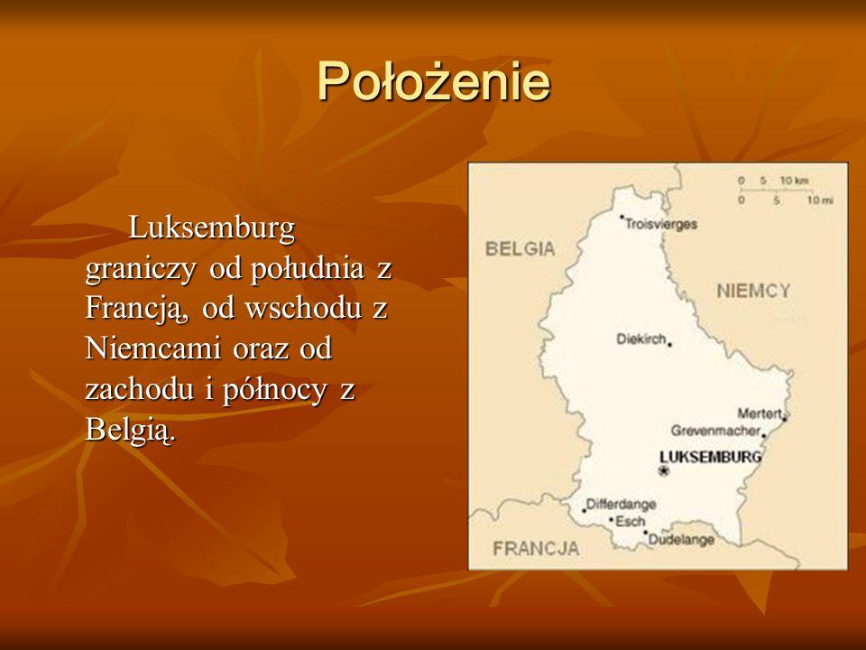 PołożenieLuksemburg graniczy od południa z Francją, od wschodu z Niemcami oraz od zachodu i północy z Belgią.