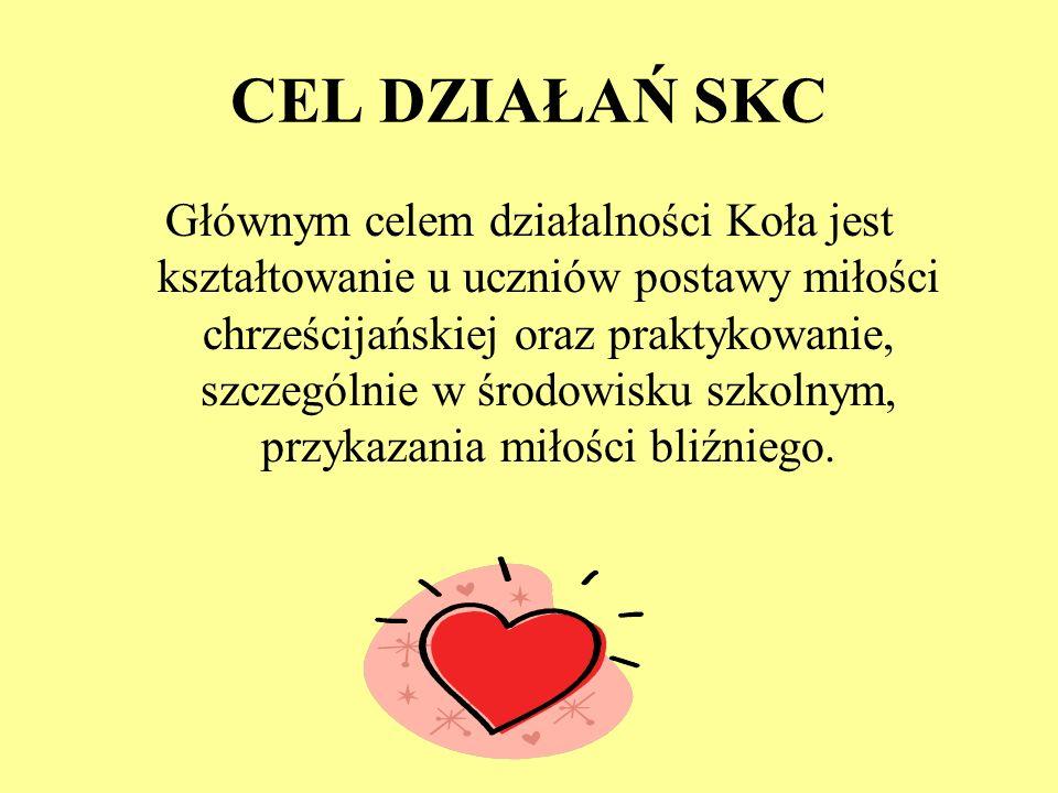 CEL DZIAŁAŃ SKC
