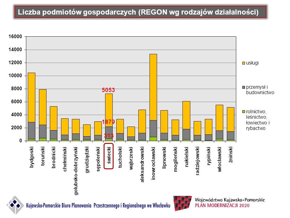 Liczba podmiotów gospodarczych (REGON wg rodzajów działalności)