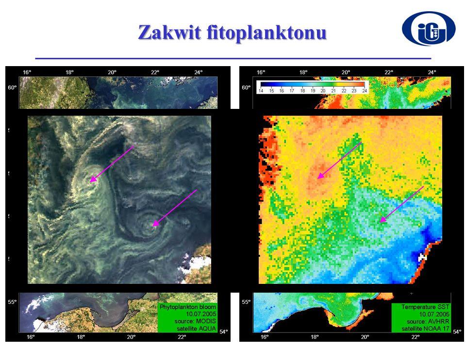 Zakwit fitoplanktonu eddies (przykład w zbliżeniu),
