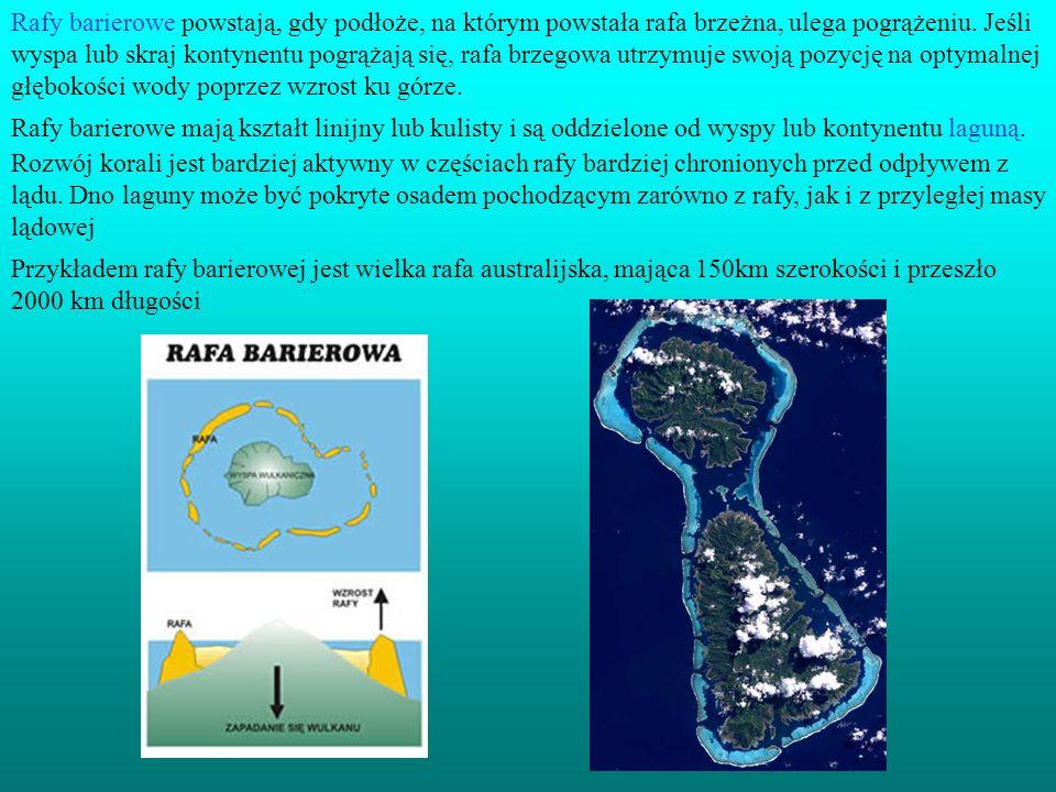 Rafy barierowe powstają, gdy podłoże, na którym powstała rafa brzeżna, ulega pogrążeniu. Jeśli wyspa lub skraj kontynentu pogrążają się, rafa brzegowa utrzymuje swoją pozycję na optymalnej głębokości wody poprzez wzrost ku górze.