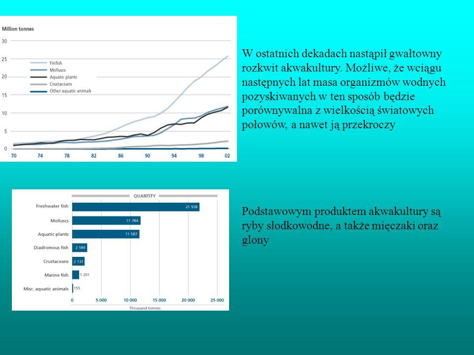 W ostatnich dekadach nastąpił gwałtowny rozkwit akwakultury