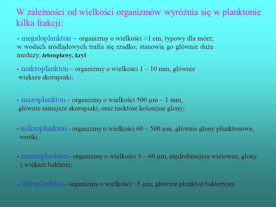 W zależności od wielkości organizmów wyróżnia się w planktonie kilka frakcji: