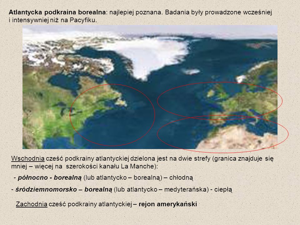 Atlantycka podkraina borealna: najlepiej poznana