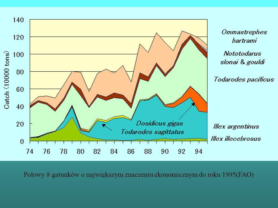Połowy 8 gatunków o największym znaczeniu ekonomicznym do roku 1995(FAO)