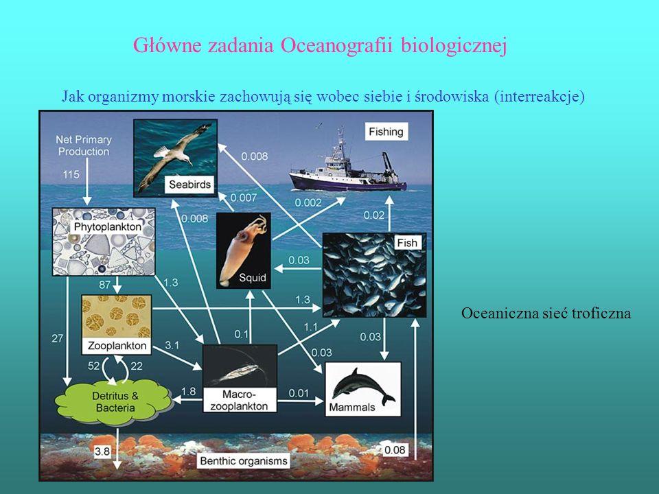Główne zadania Oceanografii biologicznej