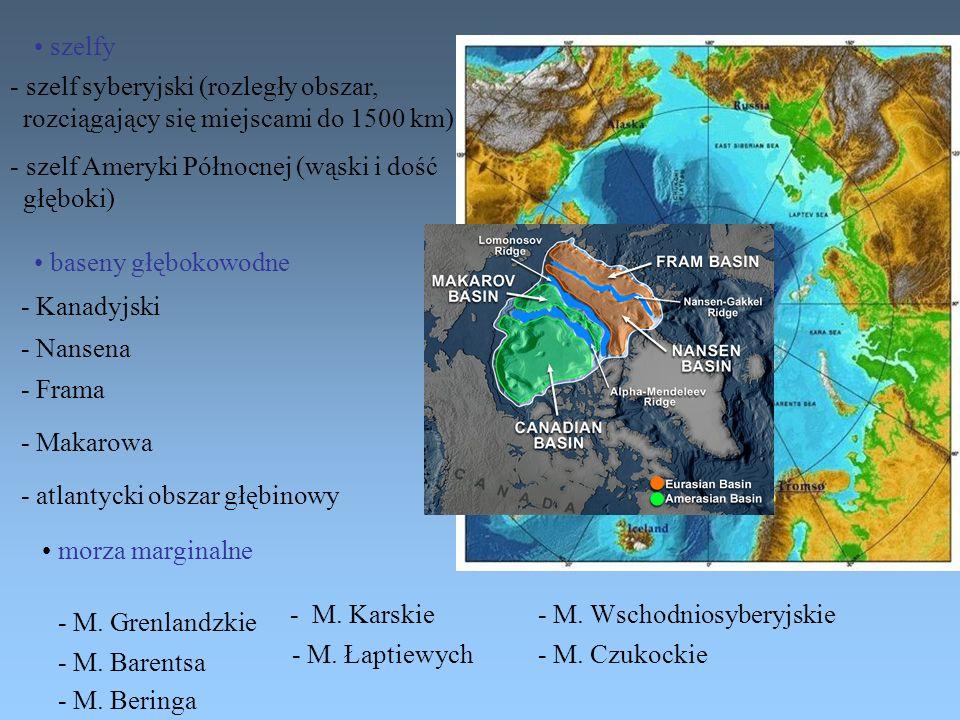 szelfy szelf syberyjski (rozległy obszar, rozciągający się miejscami do 1500 km) szelf Ameryki Północnej (wąski i dość.