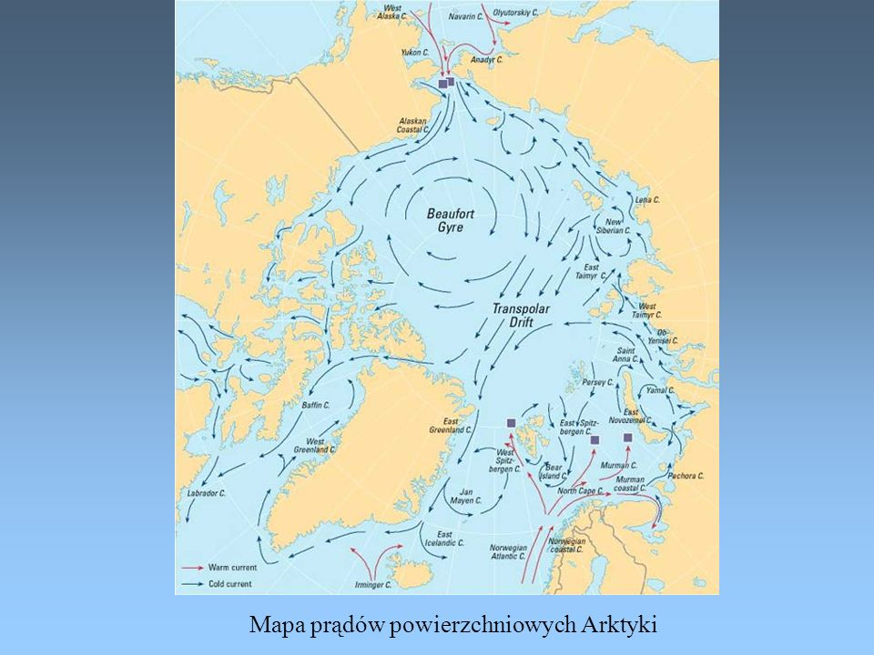 Mapa prądów powierzchniowych Arktyki
