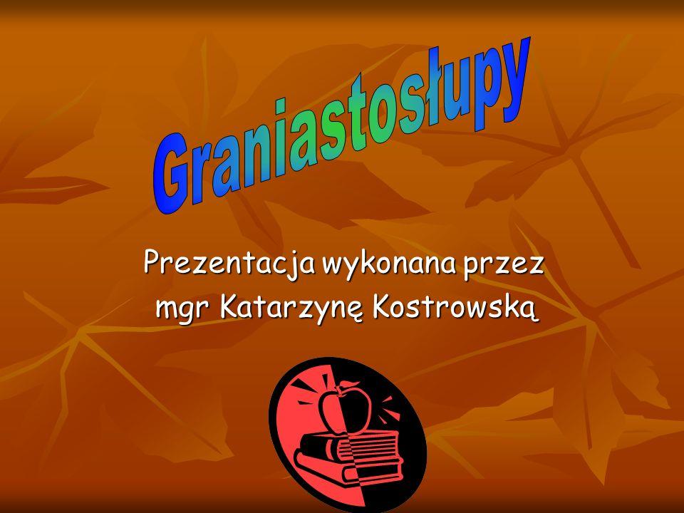 Prezentacja wykonana przez mgr Katarzynę Kostrowską