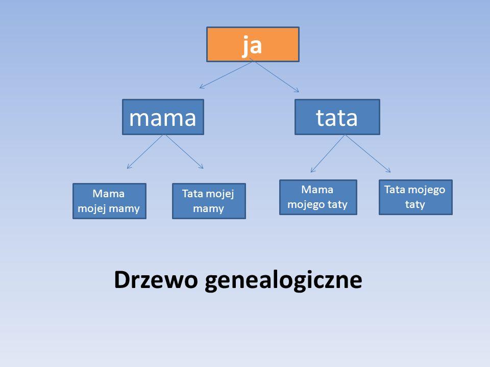 ja Drzewo genealogiczne
