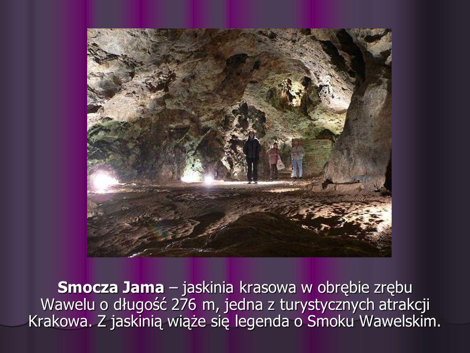 Smocza Jama – jaskinia krasowa w obrębie zrębu Wawelu o długość 276 m, jedna z turystycznych atrakcji Krakowa.