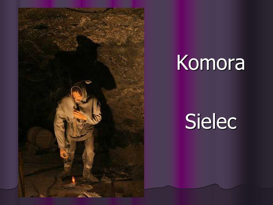 Komora Sielec