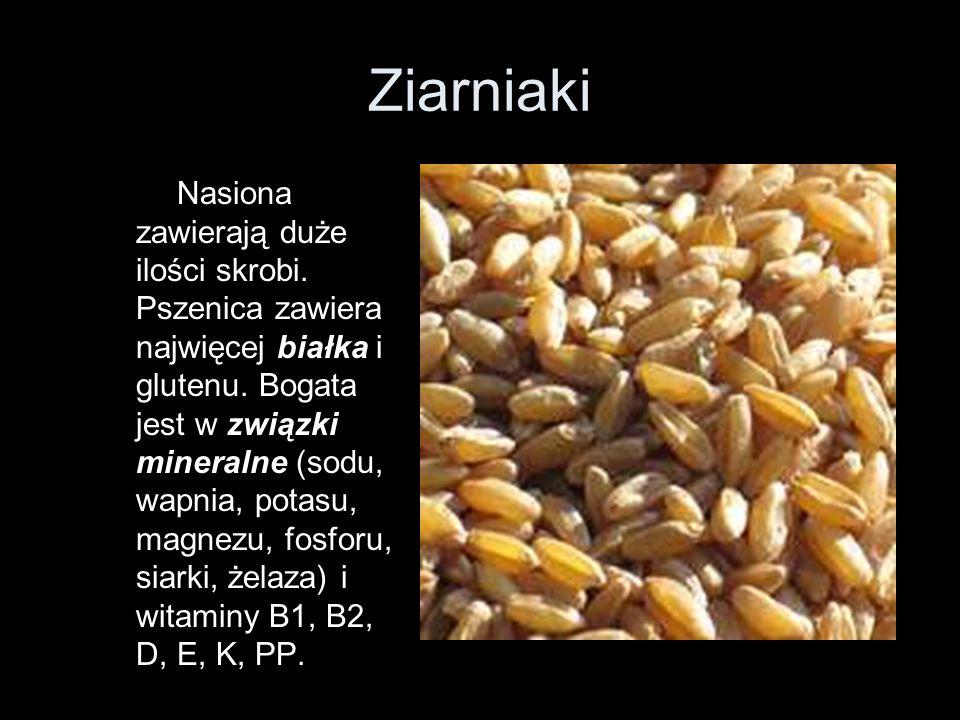 Ziarniaki