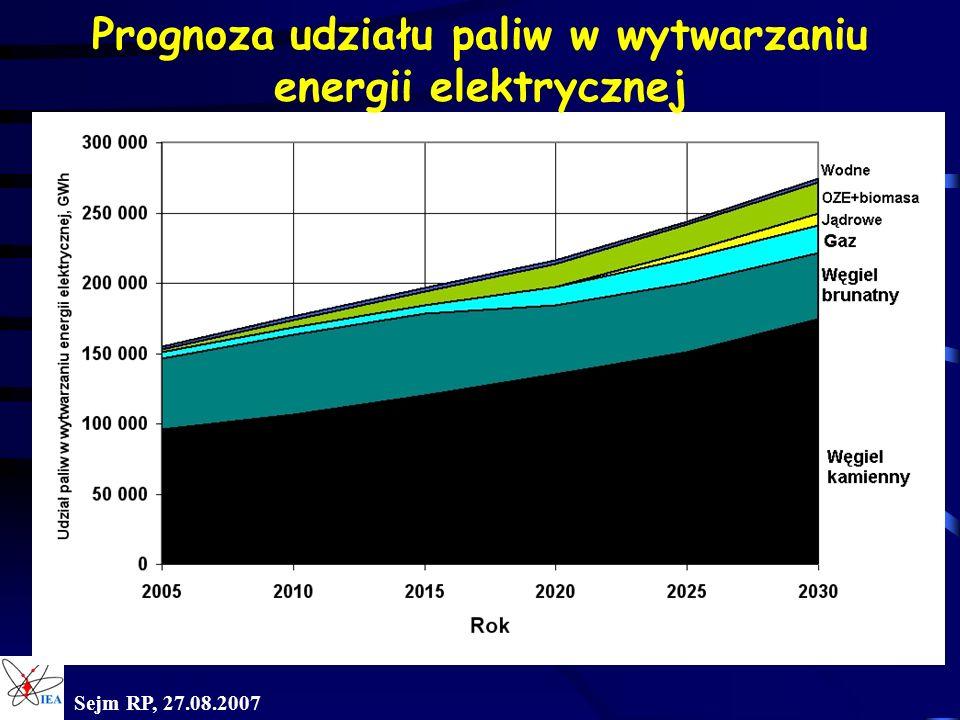 Prognoza udziału paliw w wytwarzaniu energii elektrycznej