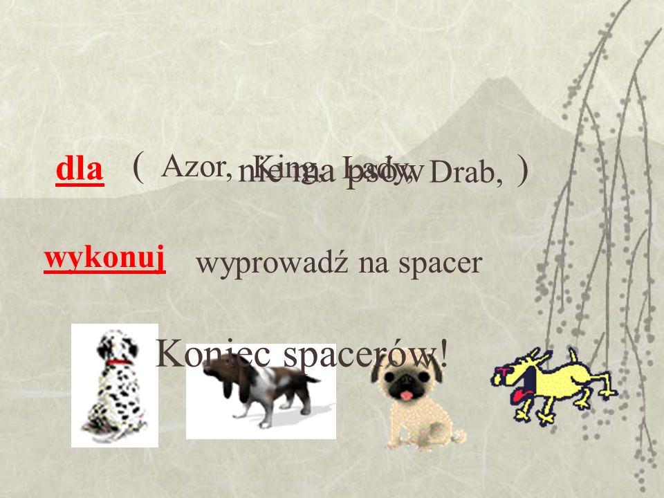 Koniec spacerów! ( dla ) nie ma psów Azor, King, Lady, Drab, wykonuj