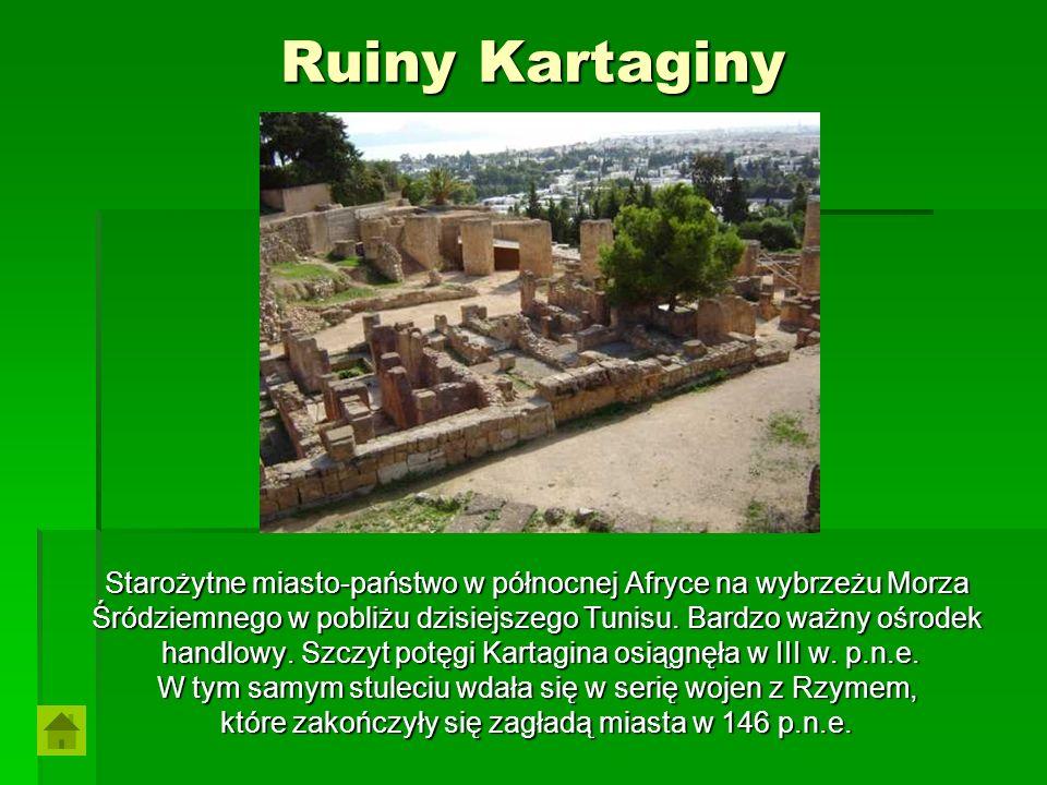 Ruiny Kartaginy Starożytne miasto-państwo w północnej Afryce na wybrzeżu Morza. Śródziemnego w pobliżu dzisiejszego Tunisu. Bardzo ważny ośrodek.
