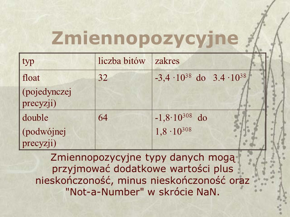 Zmiennopozycyjne typ liczba bitów zakres float (pojedynczej precyzji)