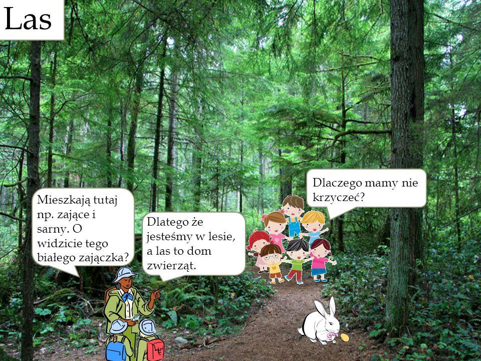 Las Las Dlaczego mamy nie krzyczeć