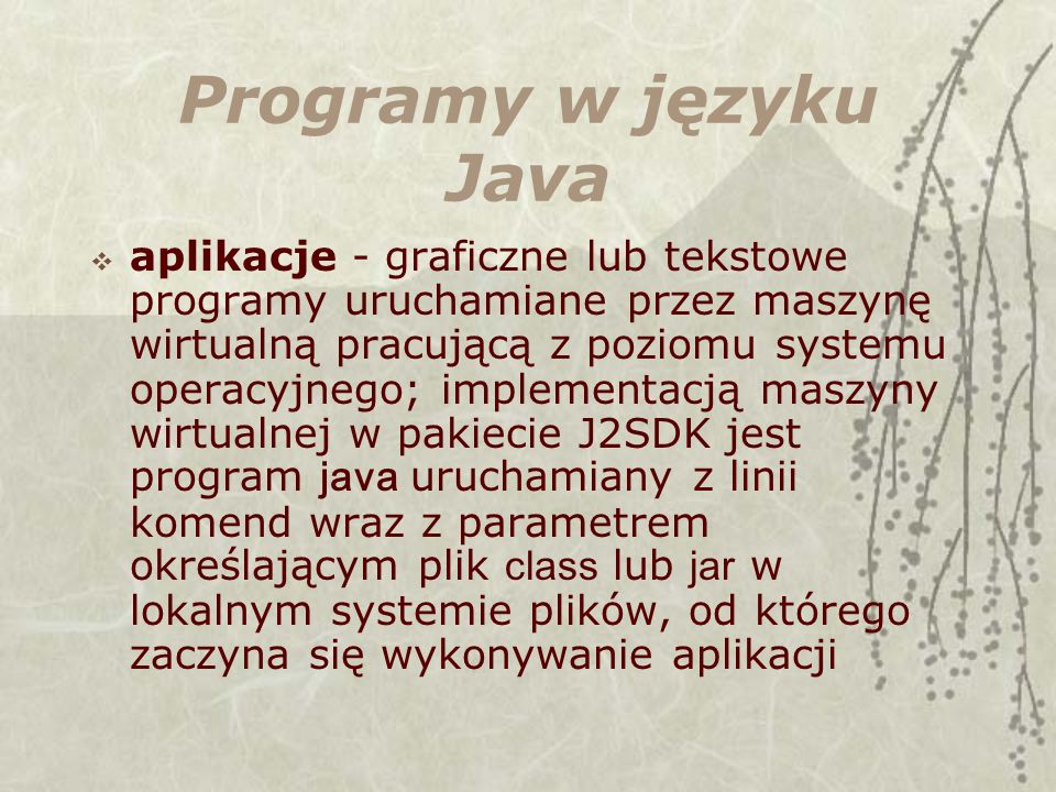 Programy w języku Java
