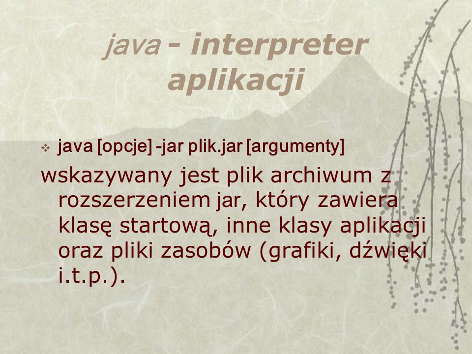 java - interpreter aplikacji