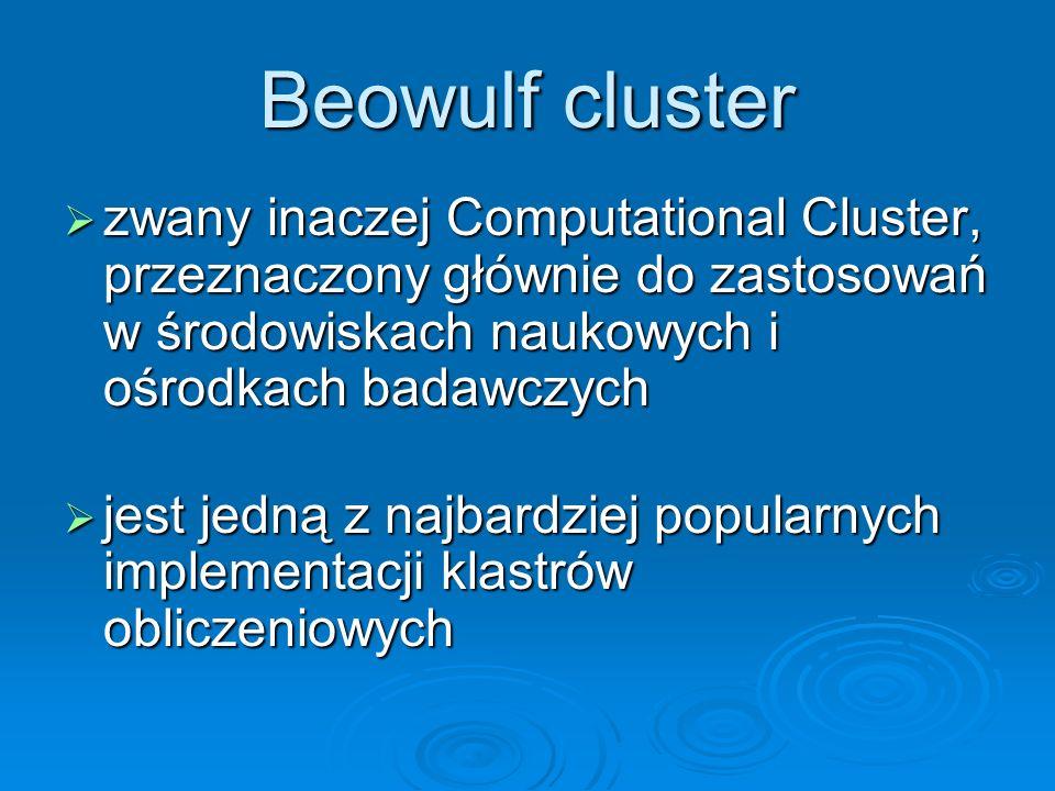 Beowulf clusterzwany inaczej Computational Cluster, przeznaczony głównie do zastosowań w środowiskach naukowych i ośrodkach badawczych.