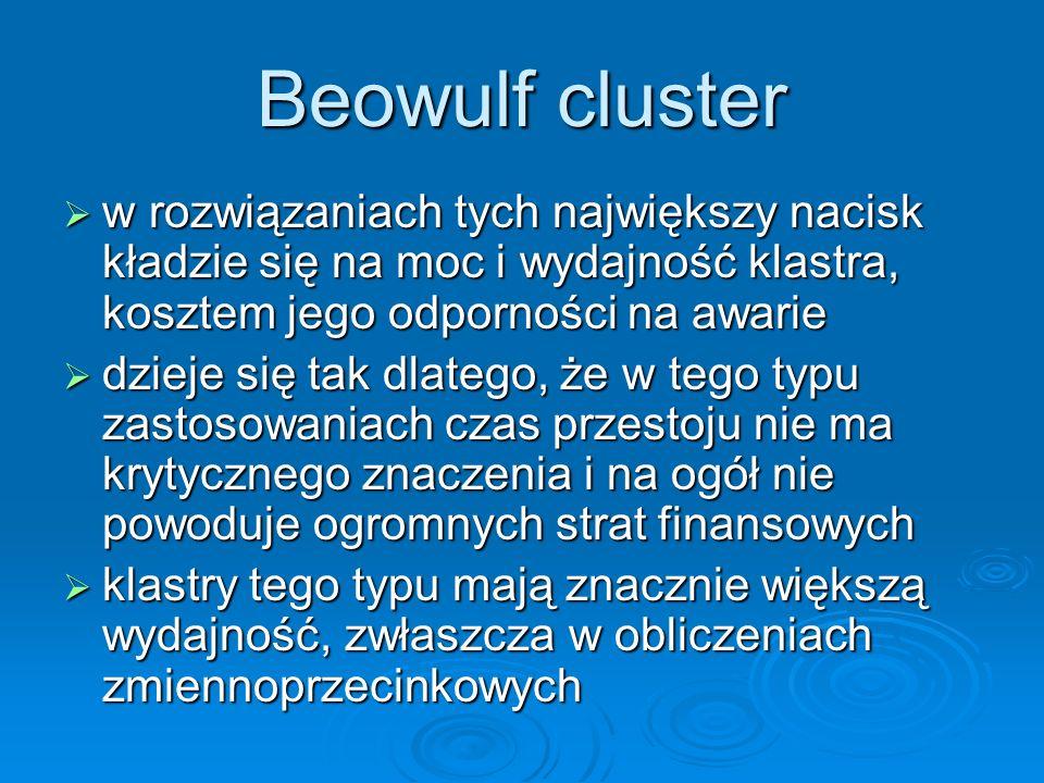 Beowulf clusterw rozwiązaniach tych największy nacisk kładzie się na moc i wydajność klastra, kosztem jego odporności na awarie.