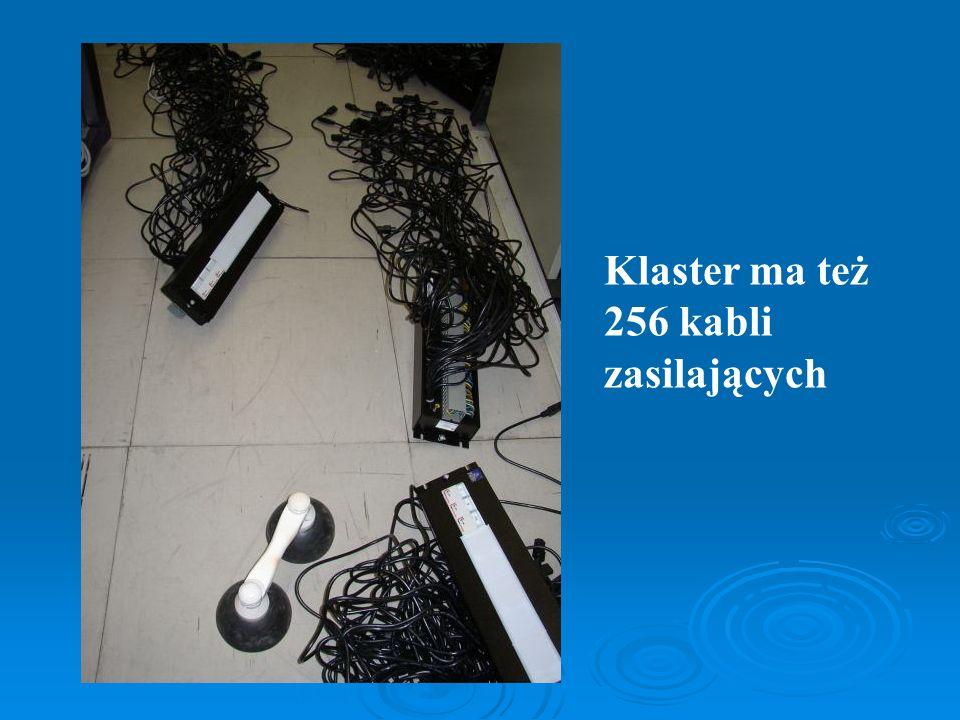 Klaster ma też 256 kabli zasilających