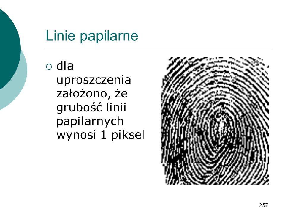 Linie papilarne dla uproszczenia założono, że grubość linii papilarnych wynosi 1 piksel