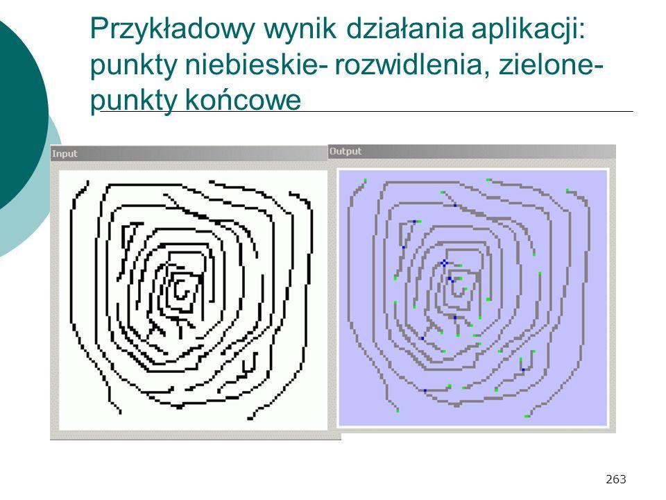 Przykładowy wynik działania aplikacji: punkty niebieskie- rozwidlenia, zielone- punkty końcowe