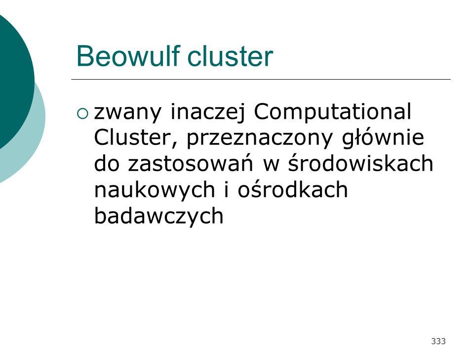 Beowulf cluster zwany inaczej Computational Cluster, przeznaczony głównie do zastosowań w środowiskach naukowych i ośrodkach badawczych.