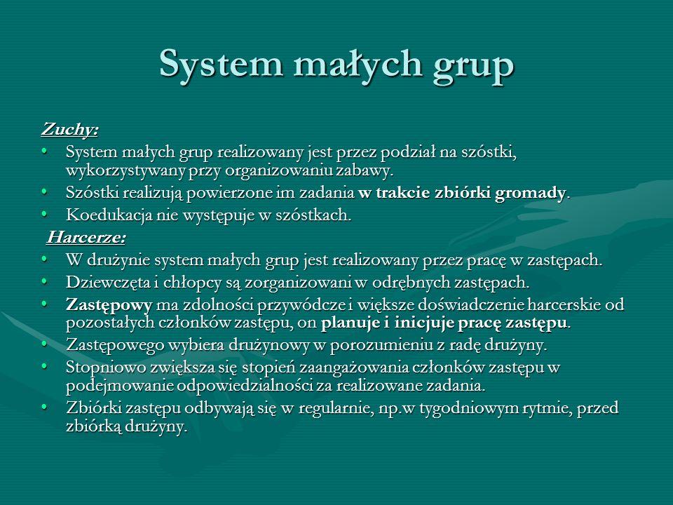 System małych grup Zuchy: