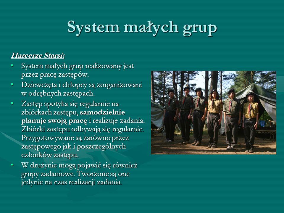 System małych grup Harcerze Starsi: