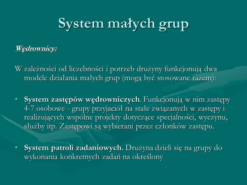 System małych grupWędrownicy: W zależności od liczebności i potrzeb drużyny funkcjonują dwa modele działania małych grup (mogą być stosowane razem):