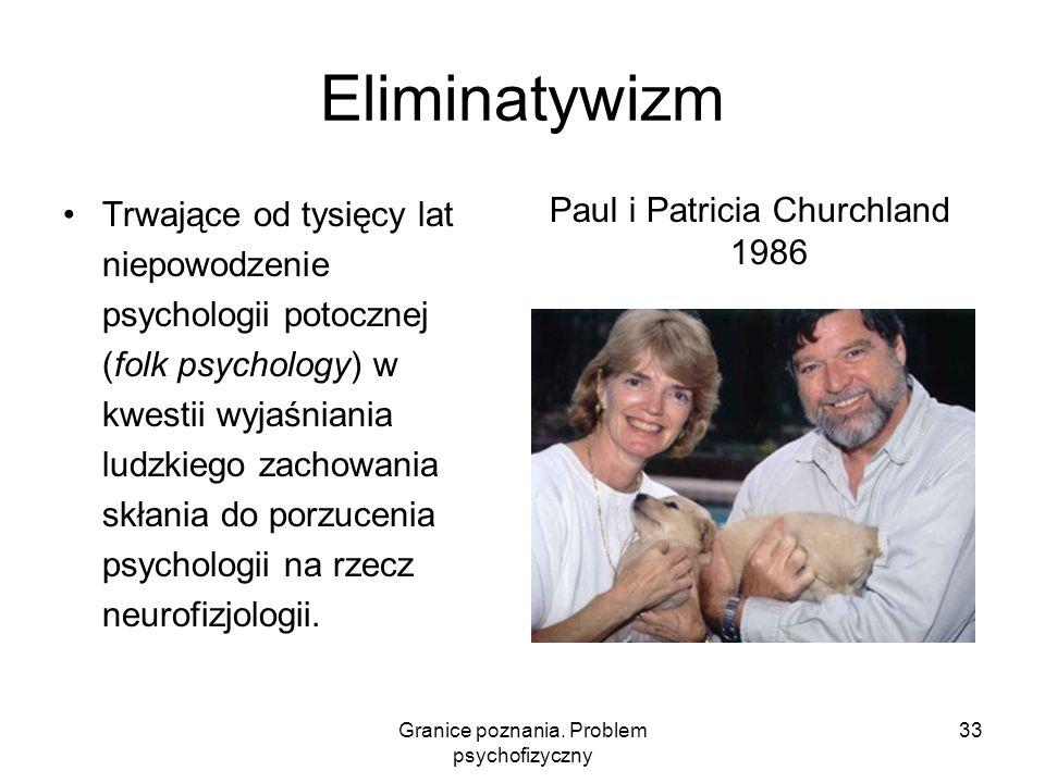 Eliminatywizm