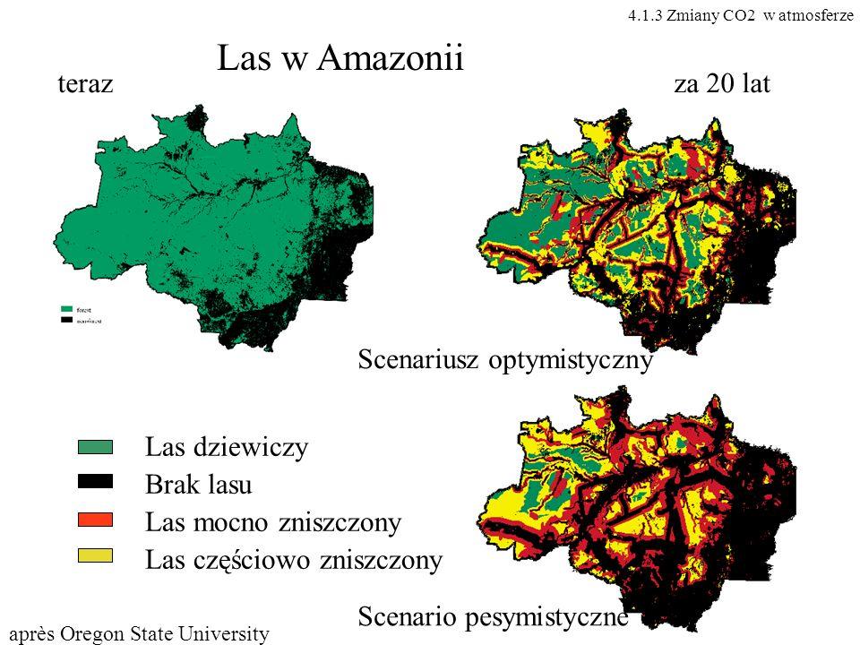 Las w Amazonii teraz za 20 lat Scenariusz optymistyczny