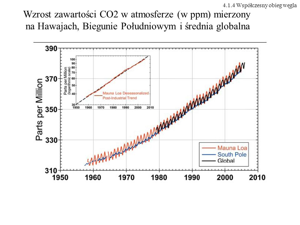 4.1.4 Współczesny obieg węgla