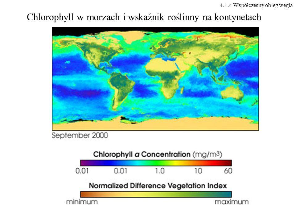 Chlorophyll w morzach i wskaźnik roślinny na kontynetach