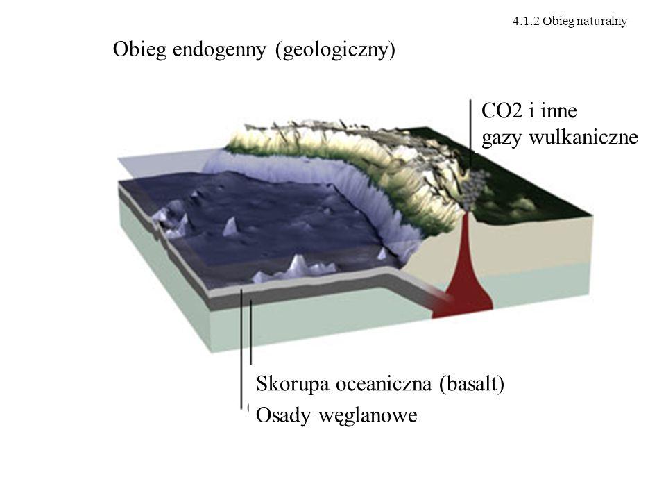 Obieg endogenny (geologiczny)