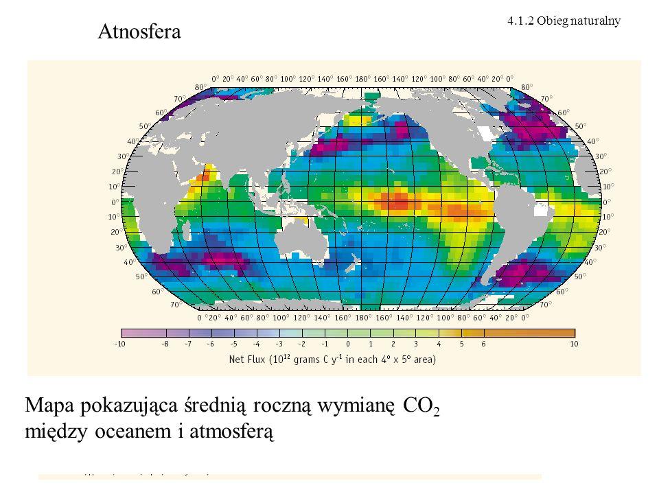 Mapa pokazująca średnią roczną wymianę CO2 między oceanem i atmosferą