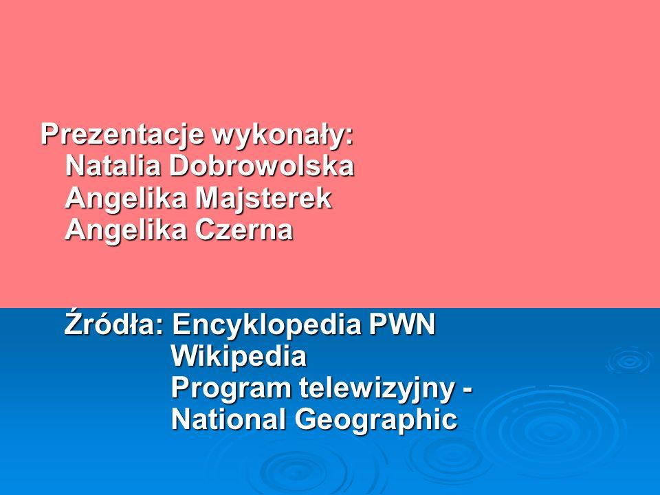 Prezentacje wykonały: Natalia Dobrowolska Angelika Majsterek Angelika Czerna Źródła: Encyklopedia PWN Wikipedia Program telewizyjny - National Geographic