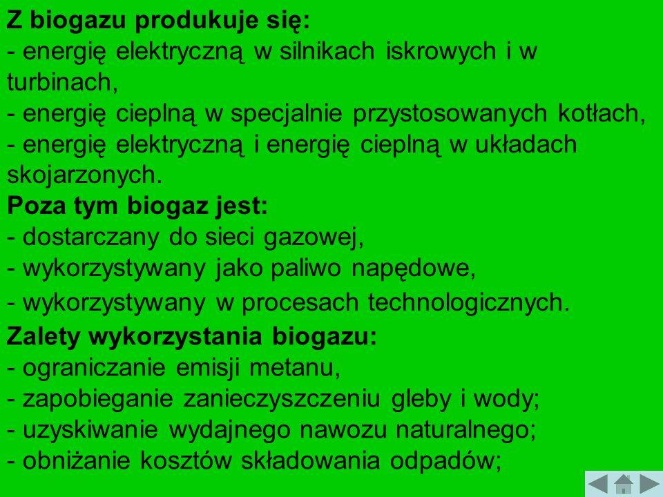 Z biogazu produkuje się:
