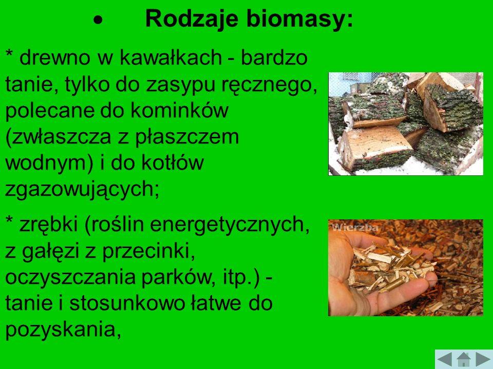 Rodzaje biomasy: