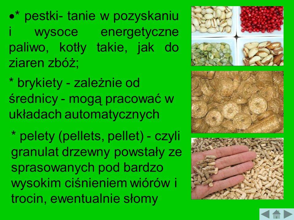 * pestki- tanie w pozyskaniu i wysoce energetyczne paliwo, kotły takie, jak do ziaren zbóż;