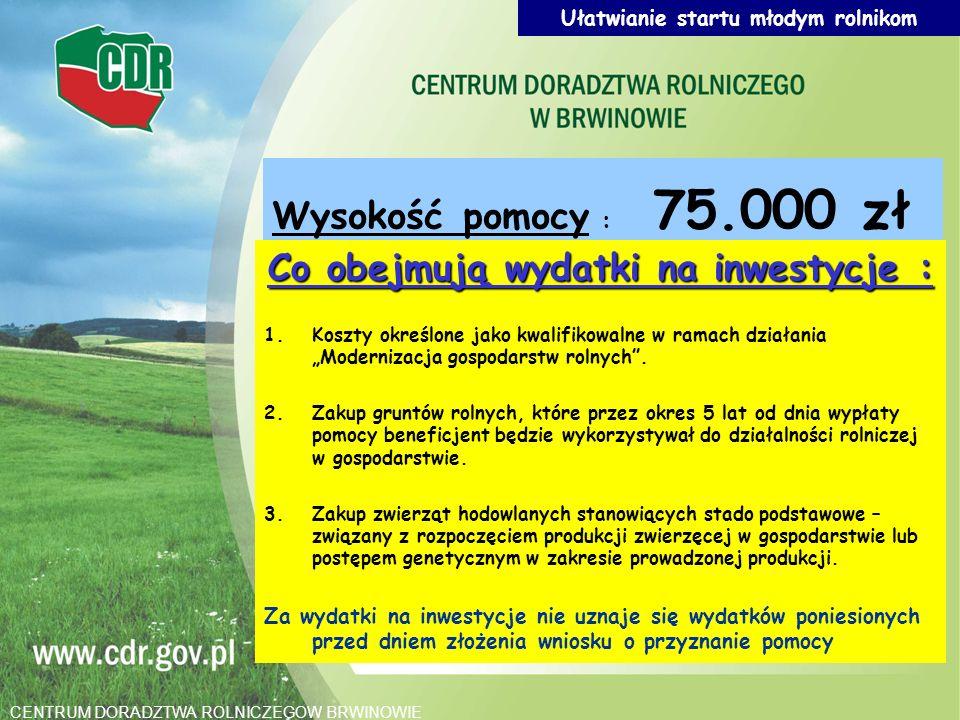 Ułatwianie startu młodym rolnikom Co obejmują wydatki na inwestycje :