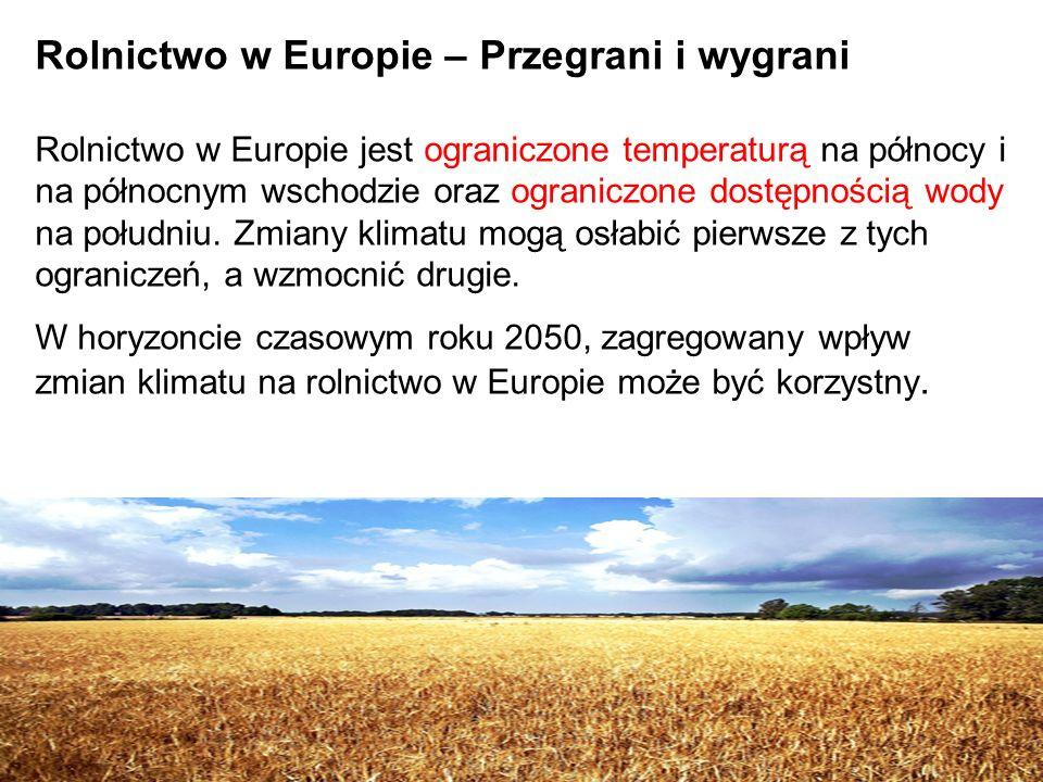 Rolnictwo w Europie – Przegrani i wygrani