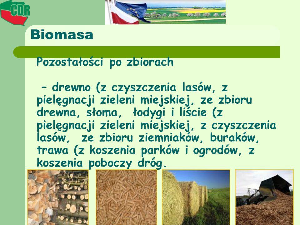 Biomasa Pozostałości po zbiorach