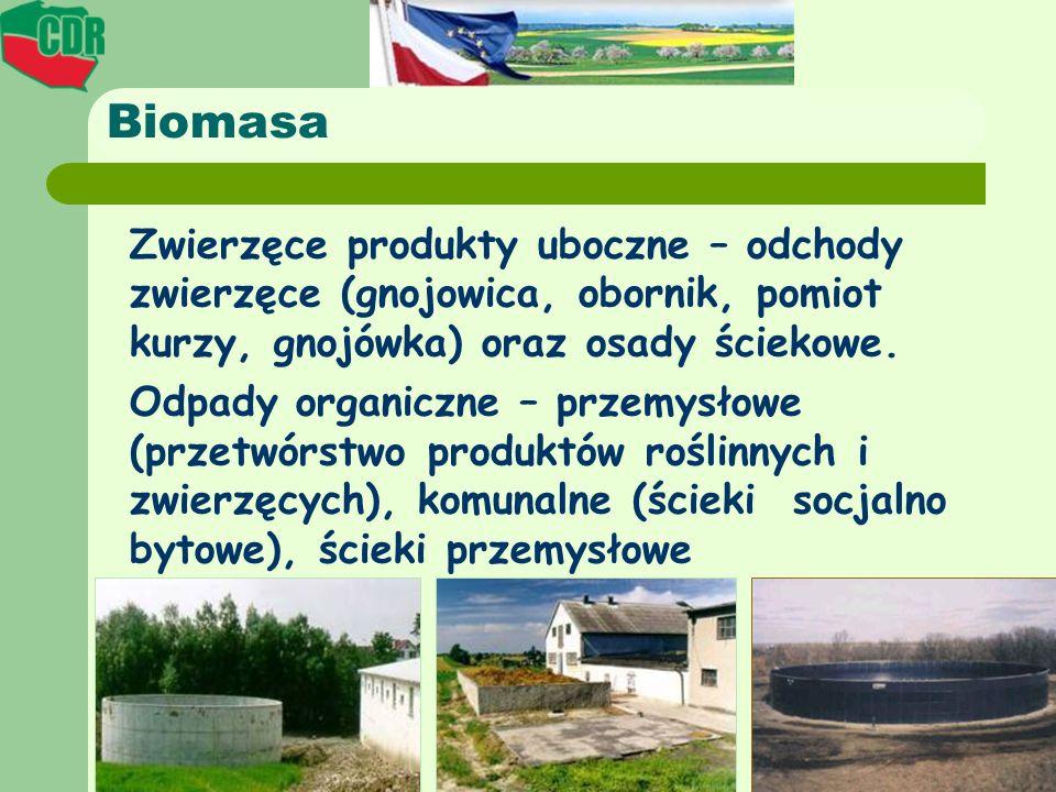 BiomasaZwierzęce produkty uboczne – odchody zwierzęce (gnojowica, obornik, pomiot kurzy, gnojówka) oraz osady ściekowe.