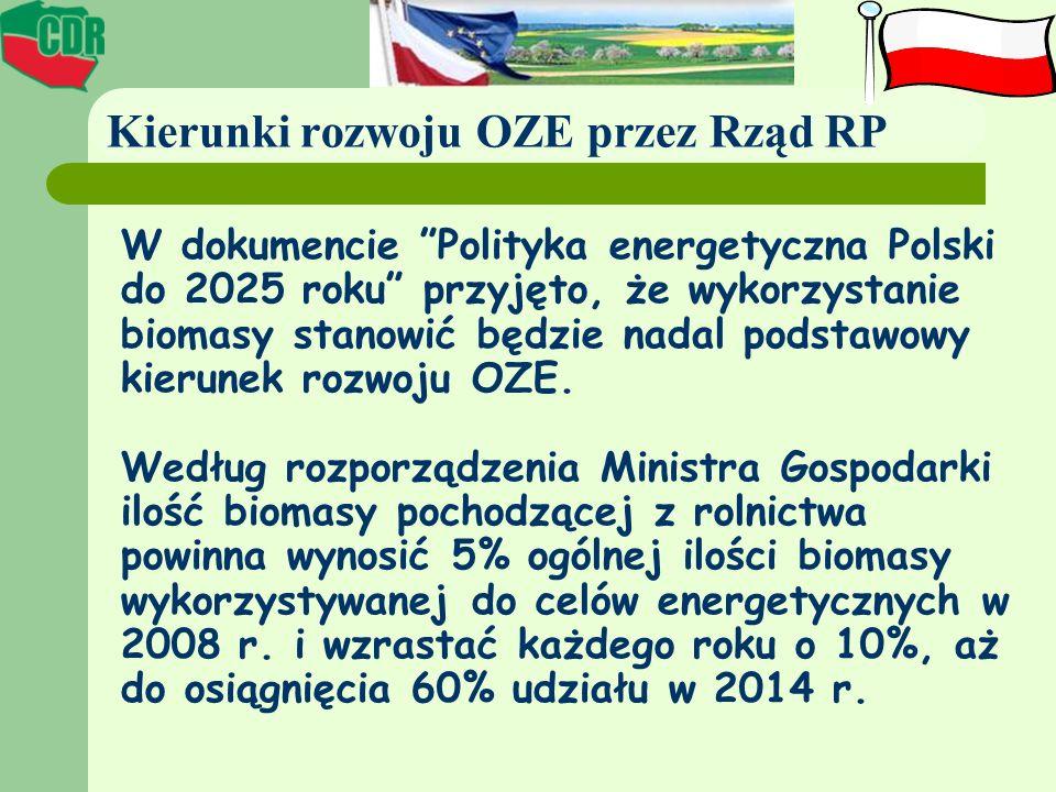 Kierunki rozwoju OZE przez Rząd RP