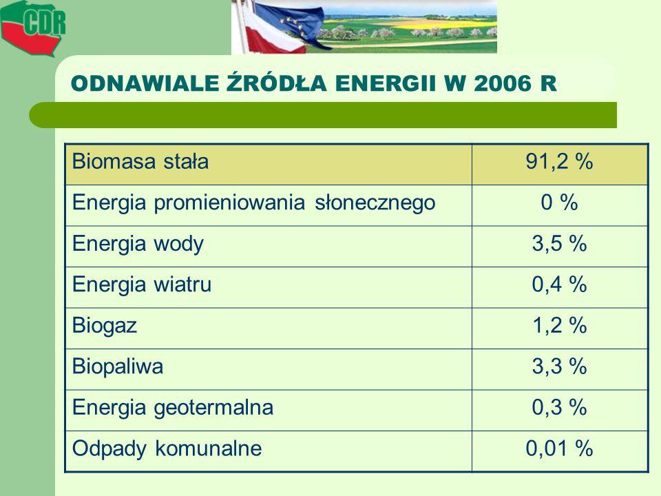 ODNAWIALE ŹRÓDŁA ENERGII W 2006 R