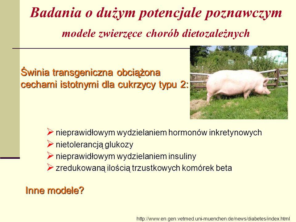 modele zwierzęce chorób dietozależnych